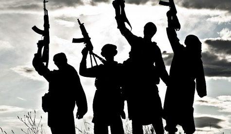 Terrorism: An Opinion