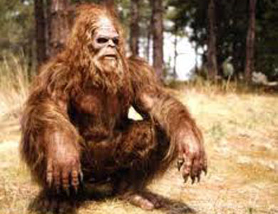 The Legend of Bigfoot