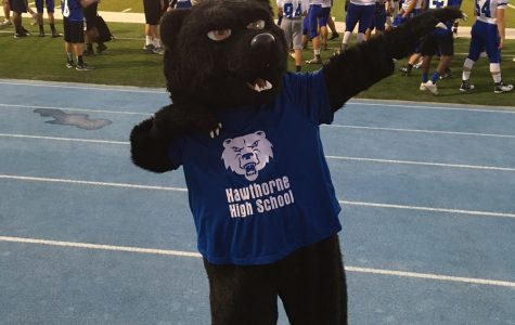 Who is the Hawthorne High School Bear?