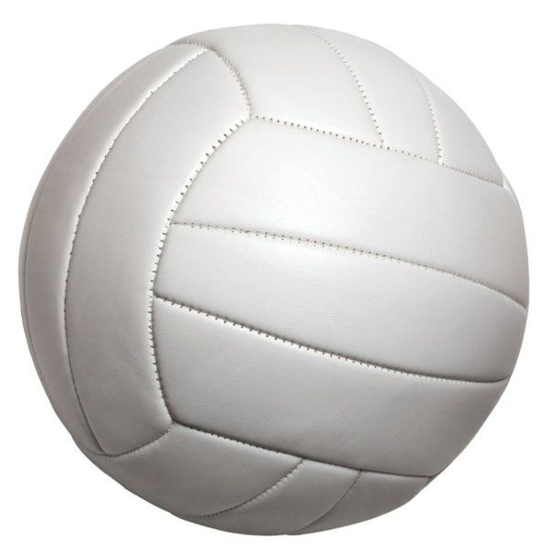 The Benefit Volleyball Game