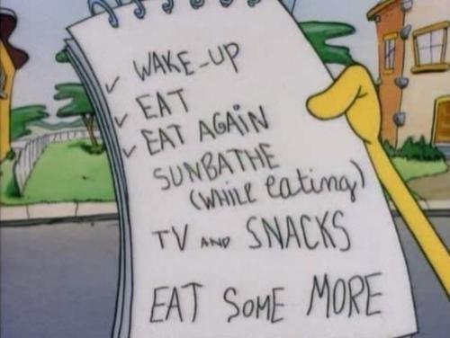 Summer Plans?