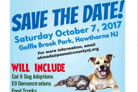 Second Annual Paws in the Park!