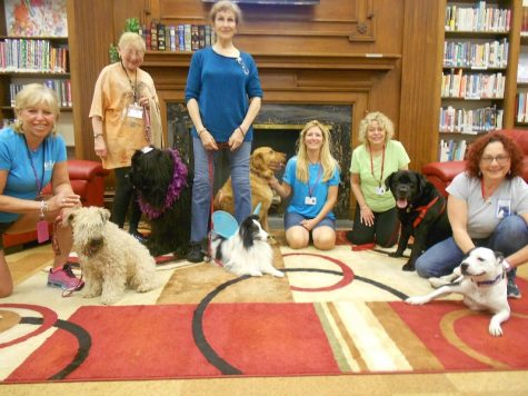 Therapy Dogs at HHS