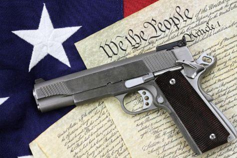 Gun control: An Opinion