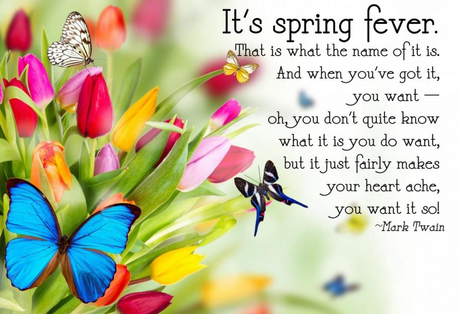 Spring+Fever