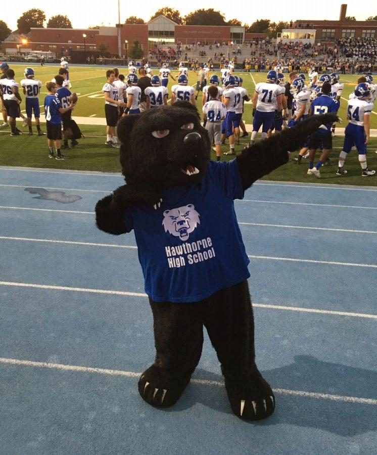 Who's The New Mascot?