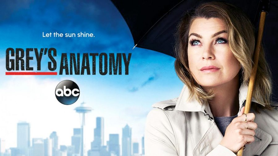 Grey's Anatomy: Is it time for the show to end?