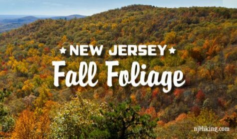 Best Places to See New Jersey Fall Foliage