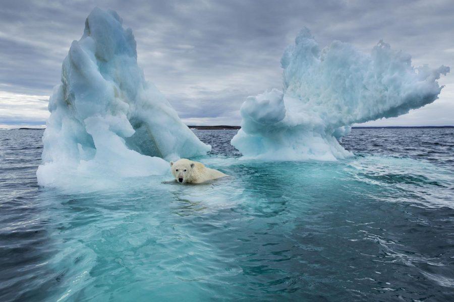 Global Warming: Why You Should Be Afraid
