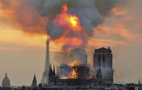 The Notre Dame Cathedral Fire