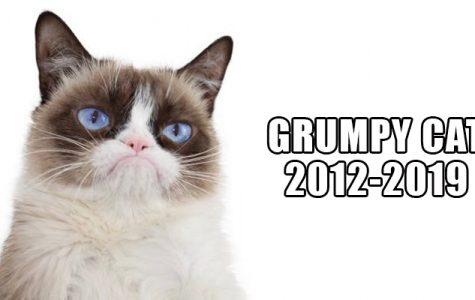 R.I.P Grumpy Cat (2012-2019)