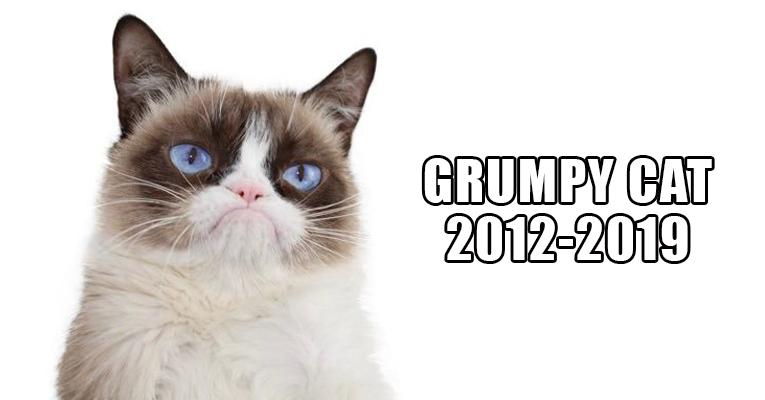 R.I.P+Grumpy+Cat+%282012-2019%29