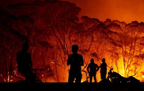 The Australian Bushfire Blazes